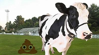 "La ""KK de la Vaca"" reparte 5000€"