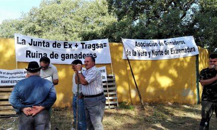 Colectivos de ganaderos se quejan de la prueba de la tuberculosis