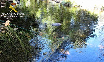 Sorprendido pescando con trasmallo en el Ibor