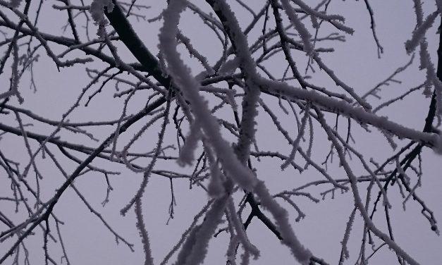 El frío viste de blanco Navalmoral