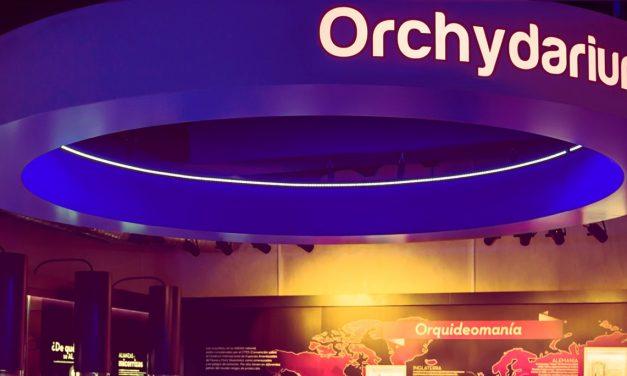 Almaraz prepara su presencia en la FIO de Monfragüe con el Orchydarium