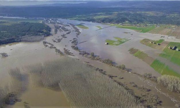 Jaraíz pide la declaración de zona catastrófica por las inundaciones sin precedentes del Tiétar