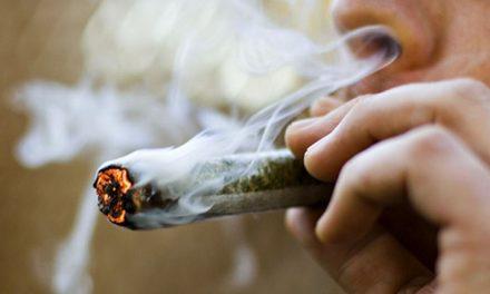 Comienza la exposición itinerante sobre el consumo de Marihuana