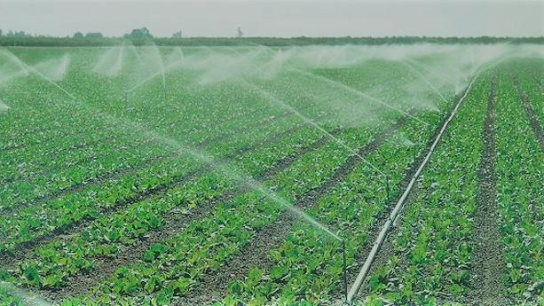 La Junta convoca ayudas para el riego de explotaciones agrarias con métodos eficientes del agua y la energía