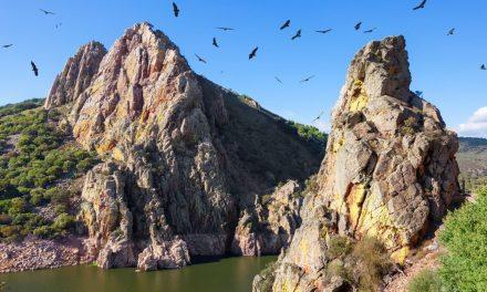 Diputación prepara el II Mes de la Reserva de la Biosfera de Monfragüe y la del Tajo-Tejo Internacional