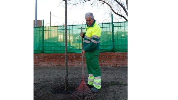 La brigada municipal morala planta 15 almeces en el CEIP Campo Arañuelo