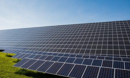Ya pueden enviarse currículum para trabajar en la Planta Talayuela Solar