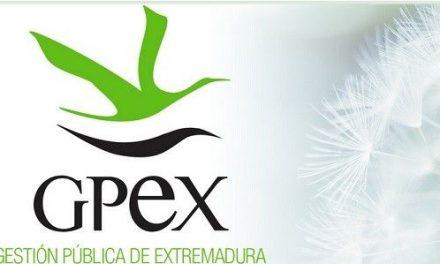 GPEX oferta tres plazas de empleo relacionadas con informática y medio ambiente