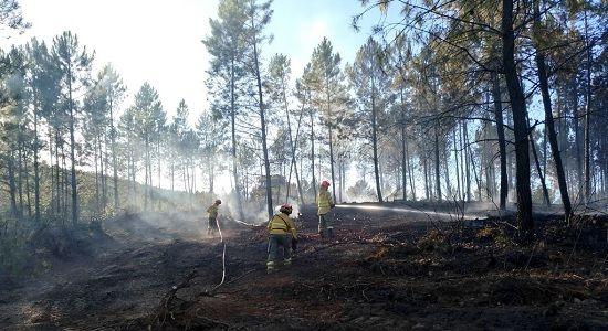 La Junta declara Época de Peligro Medio de Incendios Forestales, entre el 25 y 31 de marzo.