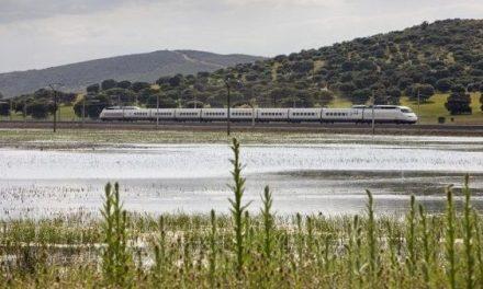 Adif AV licita, para el tramo Talayuela-Plasencia, medidas ambientales complementarias