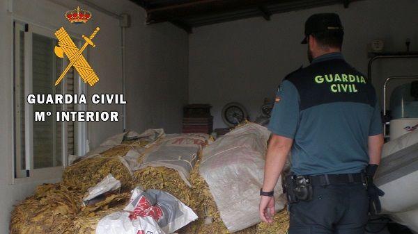 La Guardia Civil de Almaraz interviene 620 kg de hoja seca de tabaco valorados en 43.000€