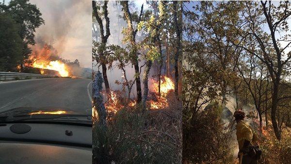 Múltiples incendios forestales asolan la comarca de La Vera, desde ayer