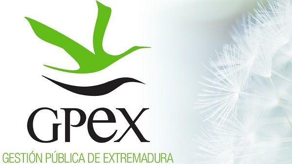 GPEX oferta una plaza de técnico en promoción turística