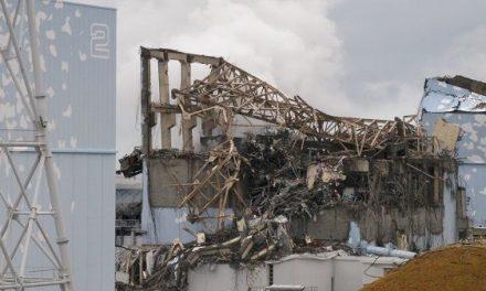 Adenex y Ecologistas en Acción del Campo Arañuelo exigen aprender de Fukushima
