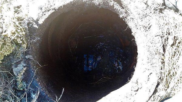 Rescatan a un asno que ha caído a un pozo en Navalmoral