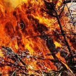 El Infoex avisa sobre la quema de restos agrícolas durante la pandemia del Covid19