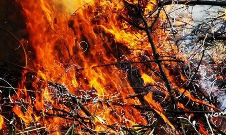 Comienza la Época de Peligro Alto de incendios forestales del Plan INFOEX