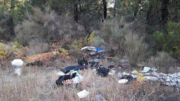 El pinar de Talayuela aparece repleto de basura