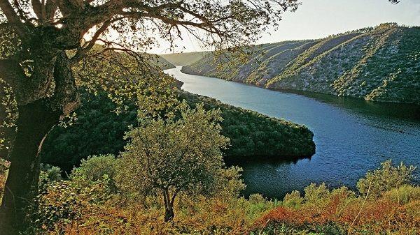 Diputación estudia implantar un tren turístico que uniría Navalmoral y Castelo Branco