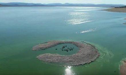 Raíces de Peraleda muestra un vídeo del dolmen de Guadalperal bajo las aguas
