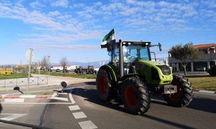 Las movilizaciones del sector tabaquero comenzarán con una tractorada en Navalmoral