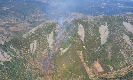 Alerta ante el incremento de las temperaturas con riesgo extremo de incendios en Extremadura