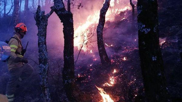 Comienza en Extremadura la época de Peligro Alto de Incendios