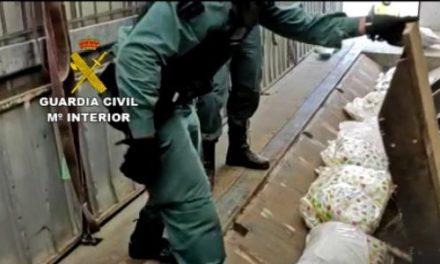 La Guardia Civil desmantela una organización de tráfico de drogas que actuaba en Tiétar y otros puntos del país
