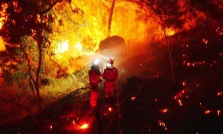 Intoxicado por CO un bombero forestal
