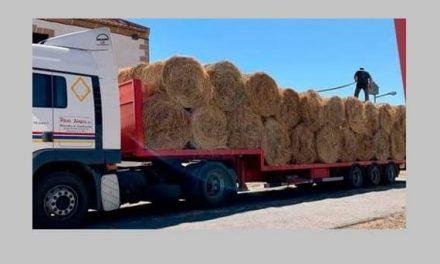 La Diputación entrega heno a los ganaderos de Aldeanueva afectados por el incendio