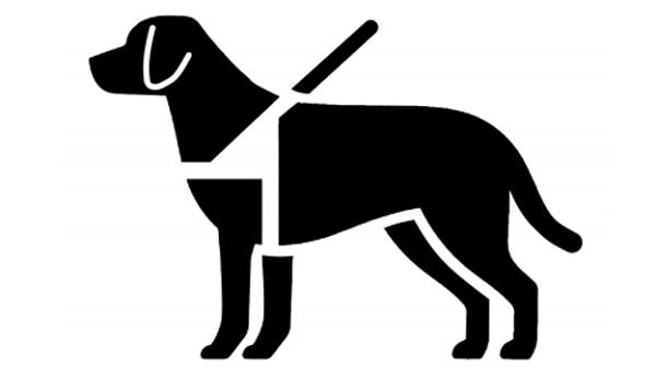 Los perros de asistencia tendrán un carnet de vinculación con la persona con discapacidad