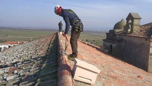Life-Zepaurban instala nidales para el Cernícalo Primilla en las ZEPA urbanas de Saucedilla y Jaraíz