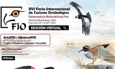 FIO celebra su XVI edición del 26 al 28 de febrero en formato digital