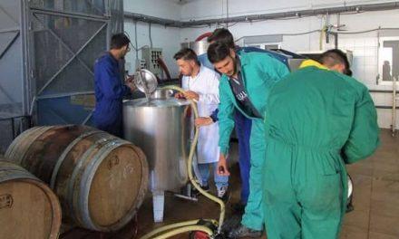 1.412 jóvenes se han incorporado a la actividad agraria en Extremadura con ayudas de la Junta