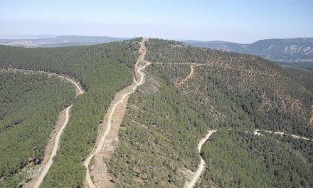 La Junta aprueba la oferta pública de caza en Extremadura para 2021