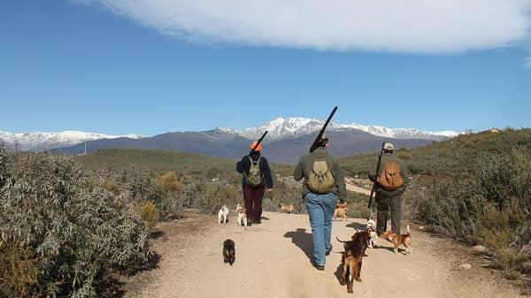 FEDEXCAZA presentará un contencioso administrativo por la suspensión de la caza de la tórtola