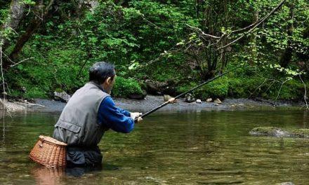 Se hace pública la resolución que modifica algunos tramos de pesca en Extremadura