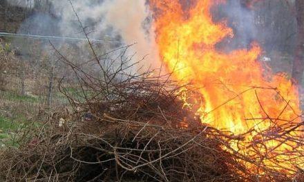 El INFOEX pide a los Ayuntamientos concienciar sobre buenas prácticas en las quemas de restos vegetales