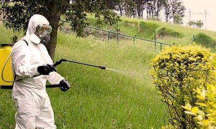 La Junta publica las resoluciones que otorgan certificados de bienestar animal y carnets para manipular plaguicidas agrícolas