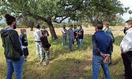El Centro de Formación del Medio Rural capacita a jóvenes en ganadería regenerativa y pastoreo dirigido, en Navalmoral