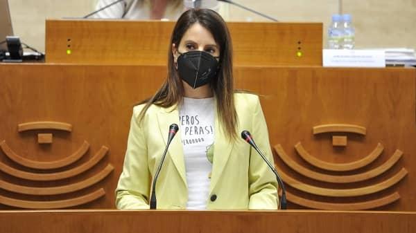 Nuria Flores expone las medidas de la Junta para la reactivación del sector turístico