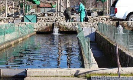 GPEX oferta cinco plazas para piscifactorías y una para la digitalización turística de Extremadura