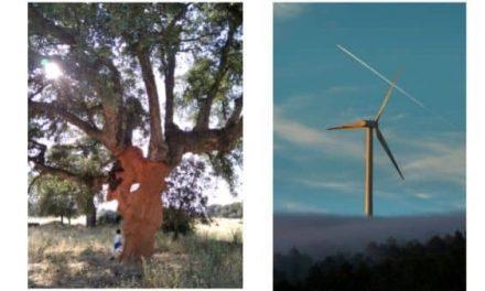 Alberto Amor y Alberto Piedra, ganadores del I Concurso de Fotografía Objetivos de Desarrollo Sostenible