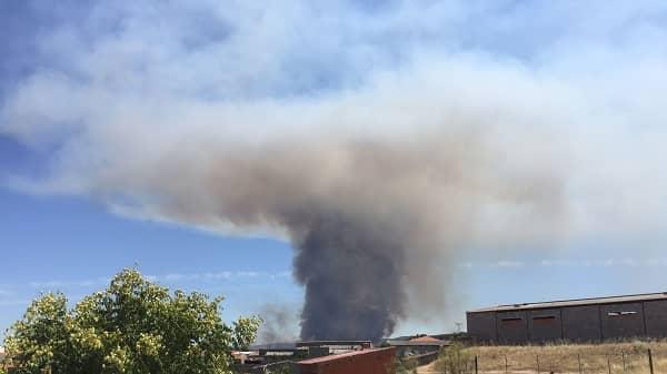 El INFOEX avisa que el riesgo de incendio irá de muy alto a muy extremo en la próxima semana