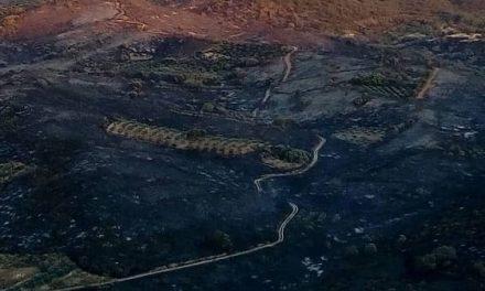 Peraleda de San Román abre el plazo de reclamación de daños por el incendio del 8 de julio