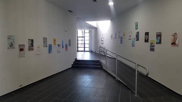 """La Asociación de Donantes de Médula Ósea organiza la exposición """"Arte para dar vida"""",  en la Casa de Cultura"""