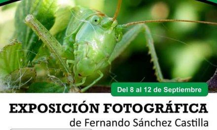Belvís inaugura una exposición fotográfica de Fernando Schez. Castilla
