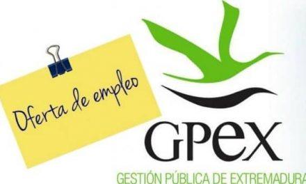 GPEX convoca cuatro ofertas de empleo